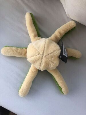 Octopus -Diverse varianten