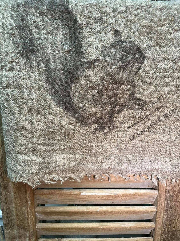 Shabby Doek eekhoorn