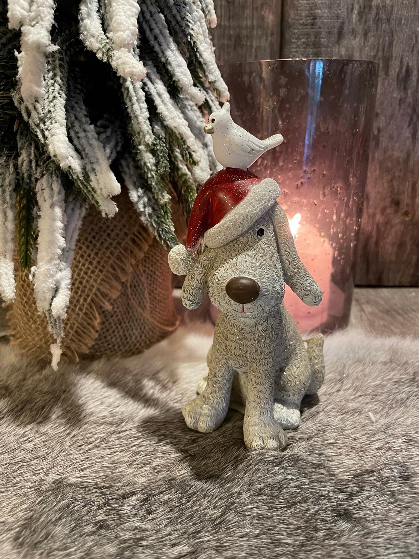 Kerst hond Met Rode Muts