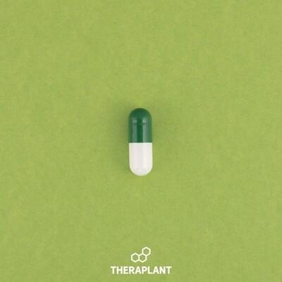 Pagoti T100C3 8848 - 10 Capsules (Theraplant)