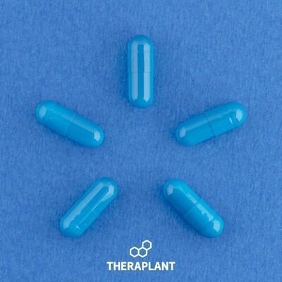 Indoti T200C1 8901 - 10 Capsules (Theraplant)