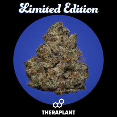 Brandica T24 9647 - 3.5g (Theraplant)