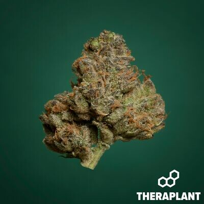 Egbrid T26 9648 - 3.5g Flower (Theraplant)