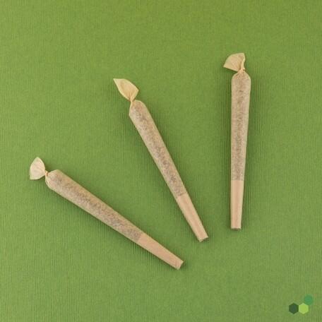 Whizbrid T26 PR 9665 - 3Pk Pre-Rolls (Theraplant)