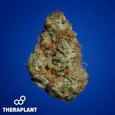 Loolica T30 9672 - 3.5g Flower (Theraplant)