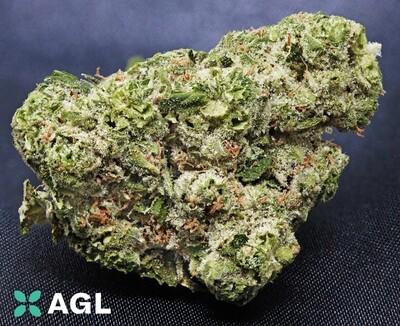 Indicol E 31.34 NDC: 9853 - 3.5g (AGL)