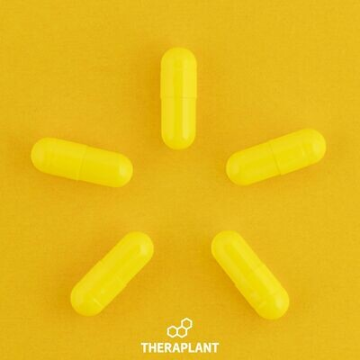 Biscay T10 10007 - 10 Capsules (Theraplant)