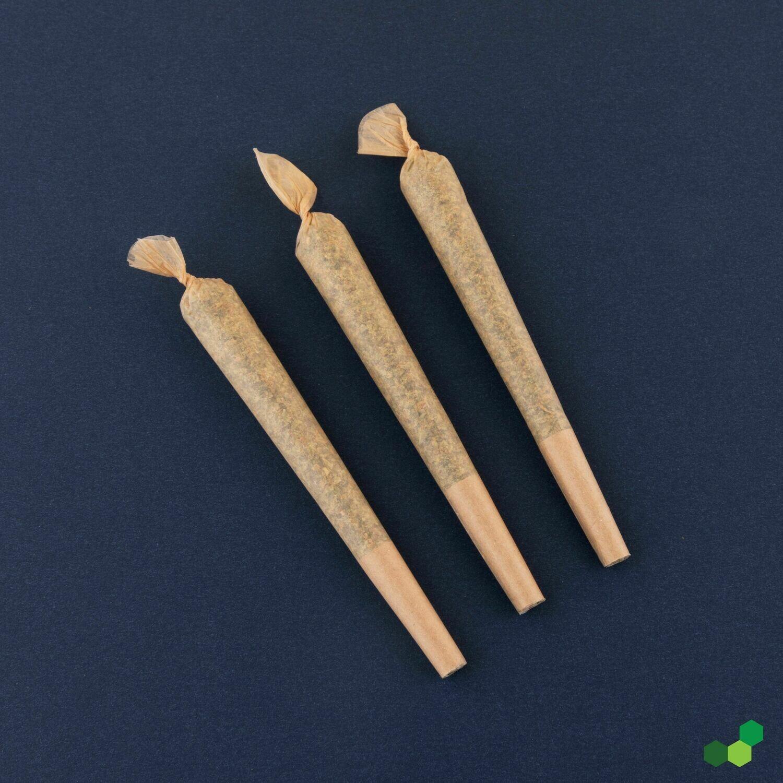 Sundica T27 PR 10069 - 3pk Pre-Rolls (Theraplant)