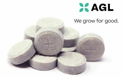 Indicol Tablets NDC: 9941 (10 Tablets)(AGL)