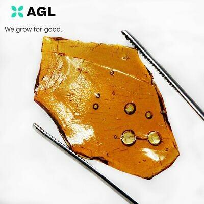 Hybridol Q SH 83.93 NDC: 10378 - 0.5g (AGL)