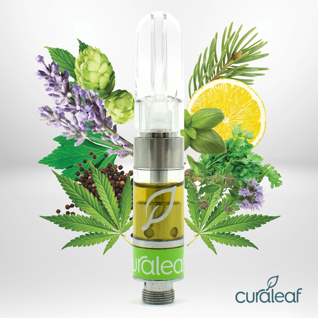 Cerulean Pure Oil A - T425 Cartridge 11190 (Curaleaf)