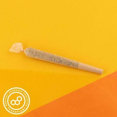 Songrica T25 PR 11544 - 3pk Pre-rolls (Theraplant)
