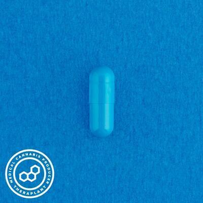Indoti T10 11557 - 10 Capsules (Theraplant)