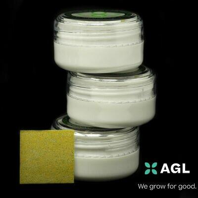 Indicol Slips NDC: 11305 - 10 Pack (AGL)