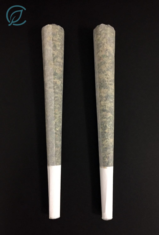 Ivory T36% PR 11204 - 2 Pack Pre Rolls (Curaleaf)