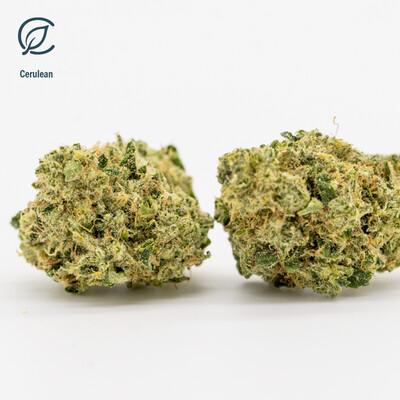 Cerulean T27% FL 11900 (7g)(Curaleaf)