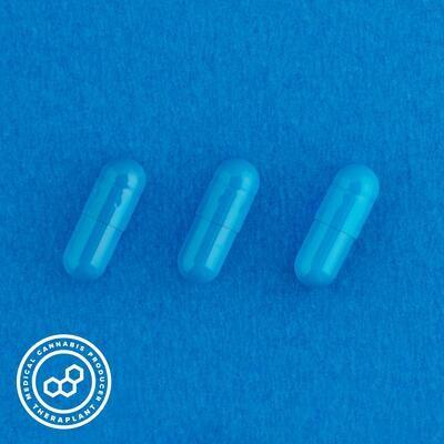 Indoti T100 12436 - 10 Capsules (Theraplant)