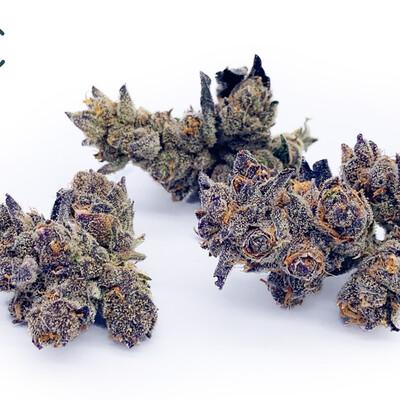 Purple T21% FL 11182 (3.5g)(Curaleaf)