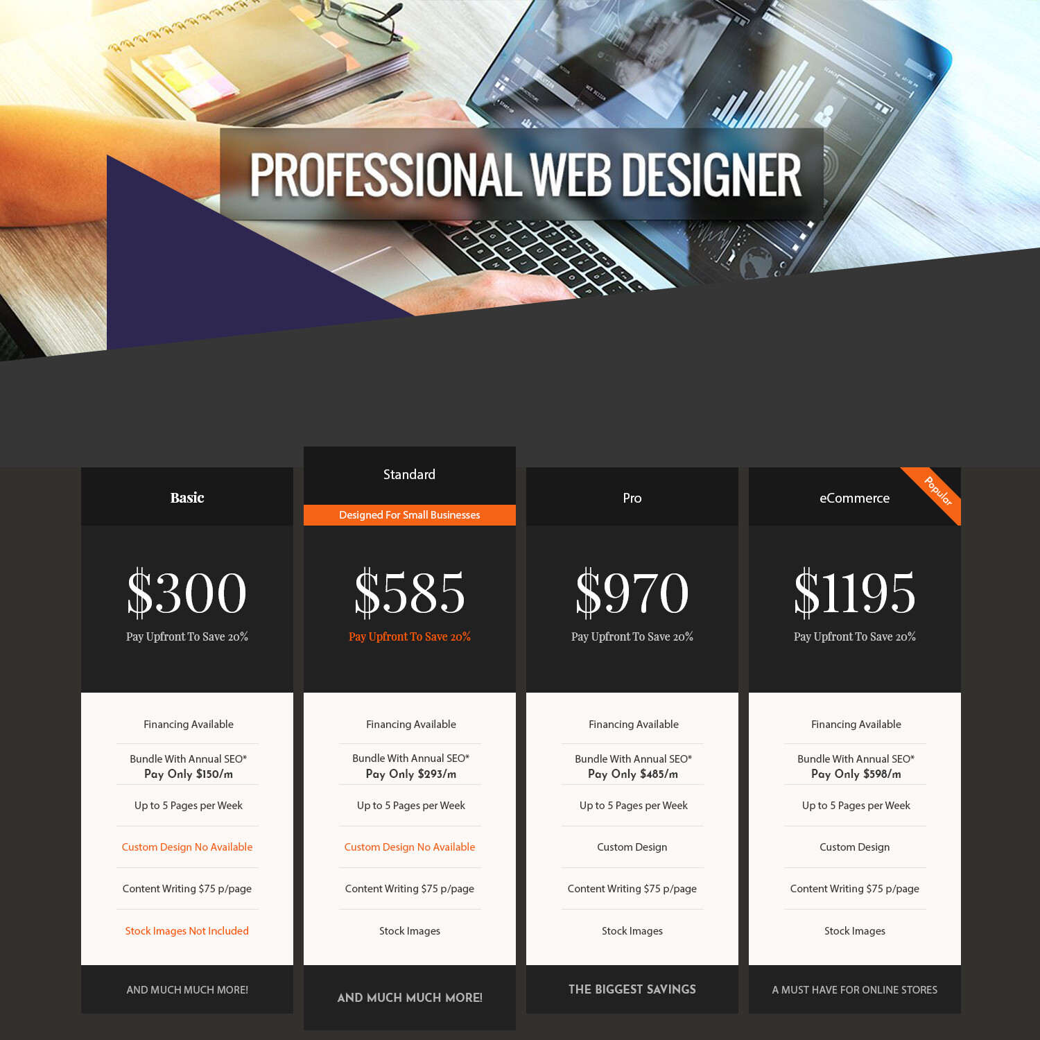 Designer Service Basic Package