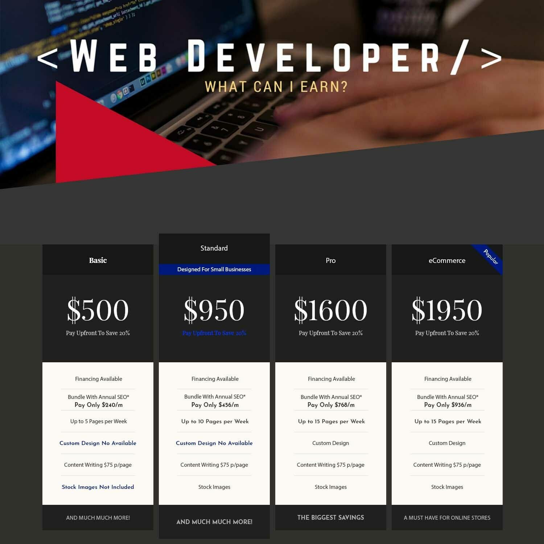 Developer Service Standard Package