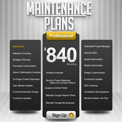 WEBSITE MAINTENANCE Service Performance Package