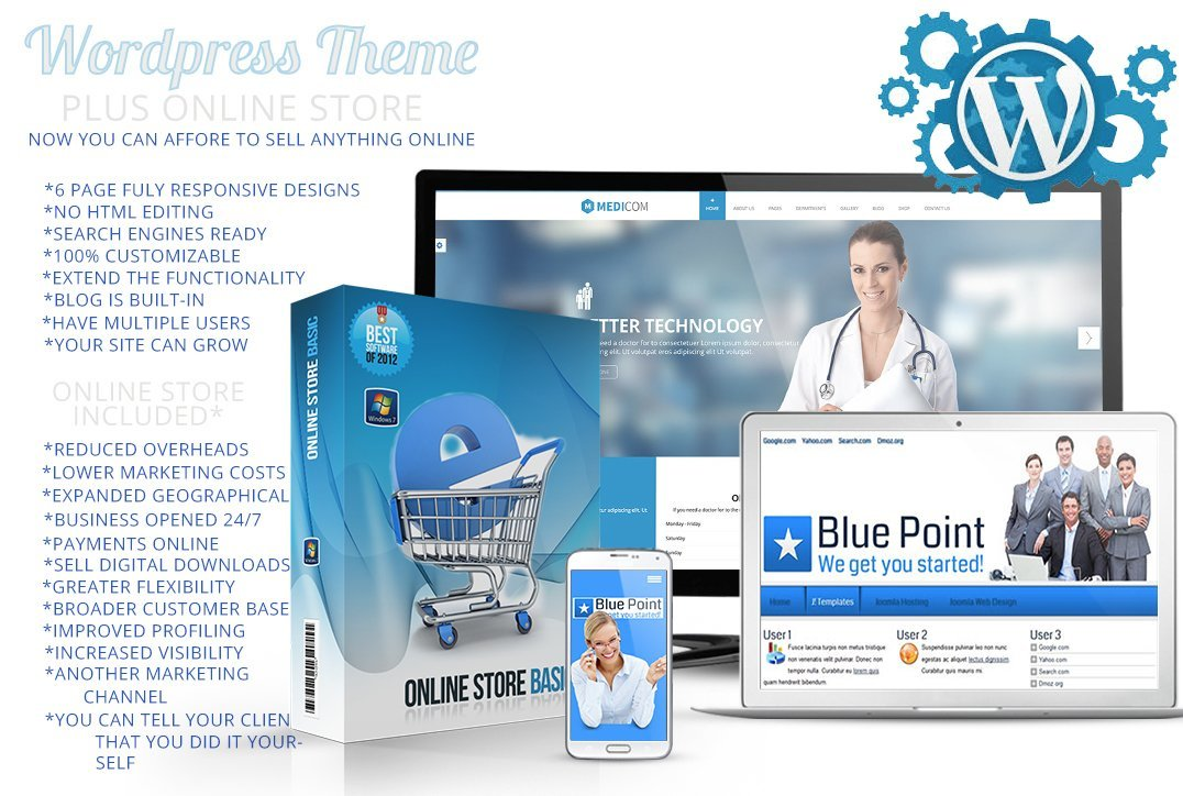 Wordpress Theme Plus Online Store Embed