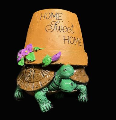 Home Sweet Home Turtle