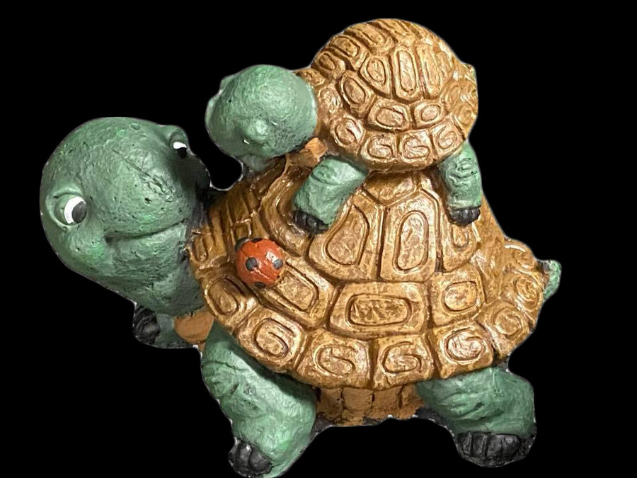 Turtle w/ Baby on Back