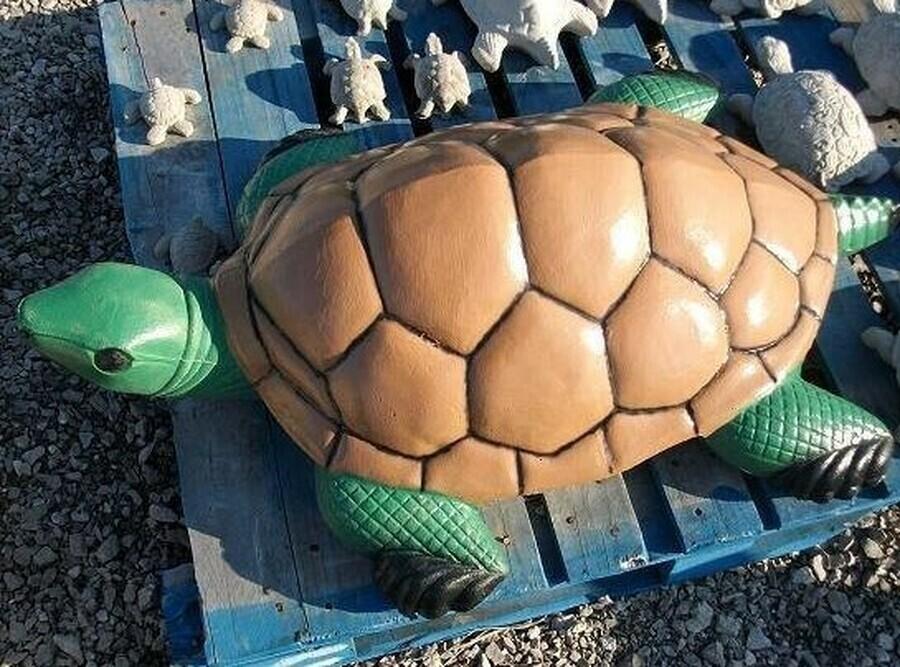 Lg. CMC Turtle