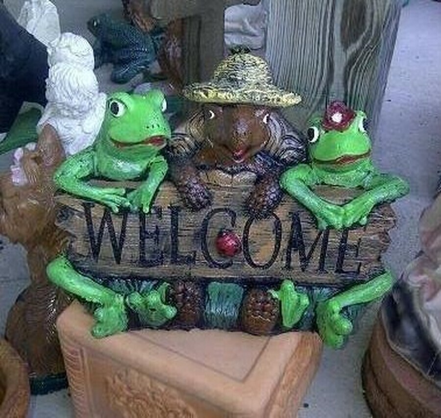 Frog & Turtle Welcome