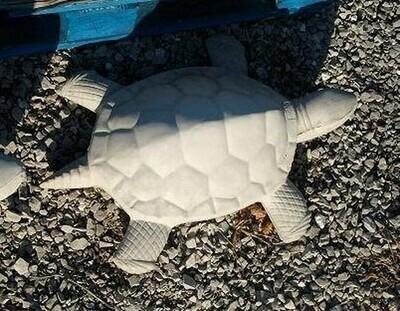 Md. CMC Turtle