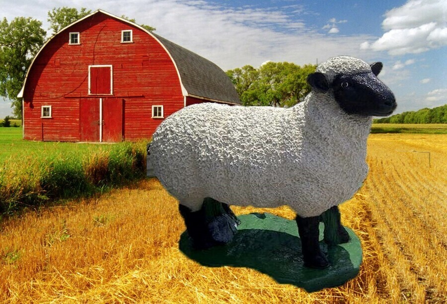 Life Size Sheep