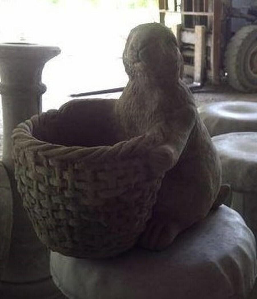 Rabbit w/ Basket