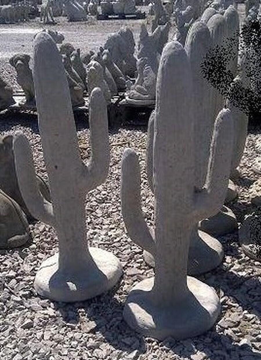 Sm. Cactus
