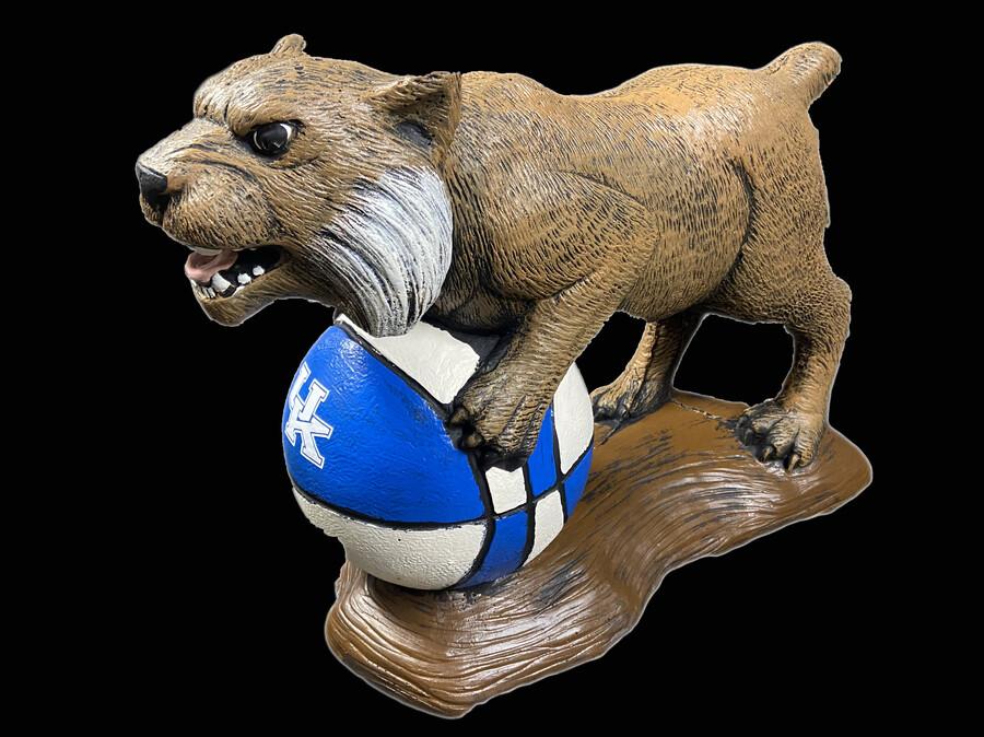 Wildcat on Ball