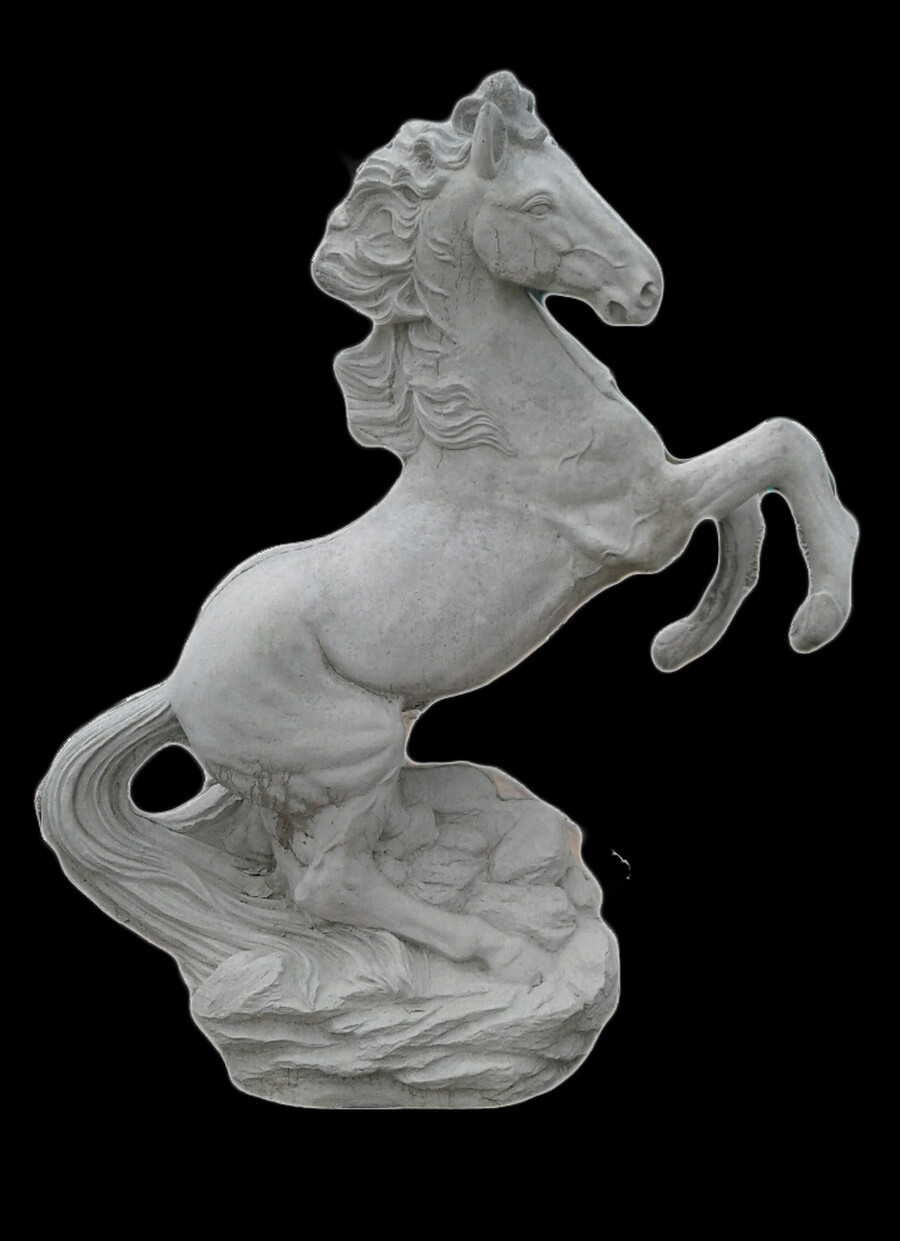 Detailed Rearing Horse