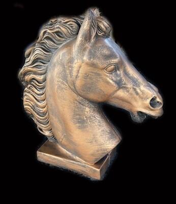 Florida Horse Head