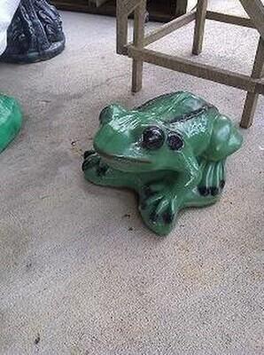 Lg. Smooth Frog