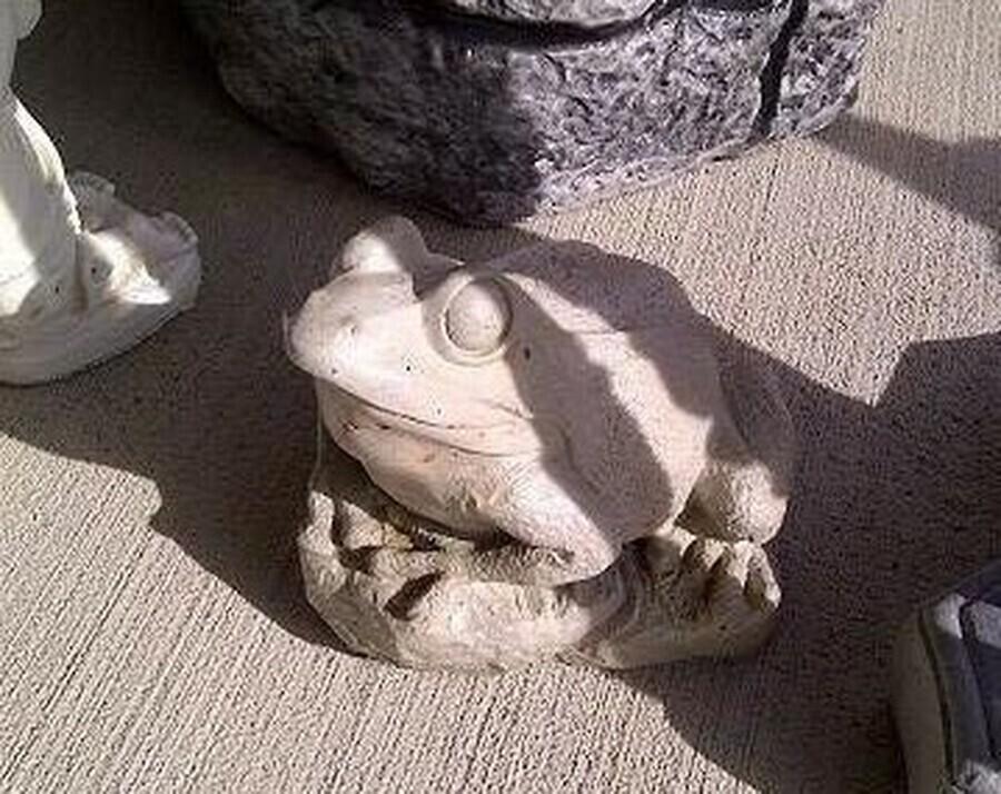 Detailed Sitting Frog