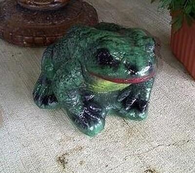 Lg. Rough Frog