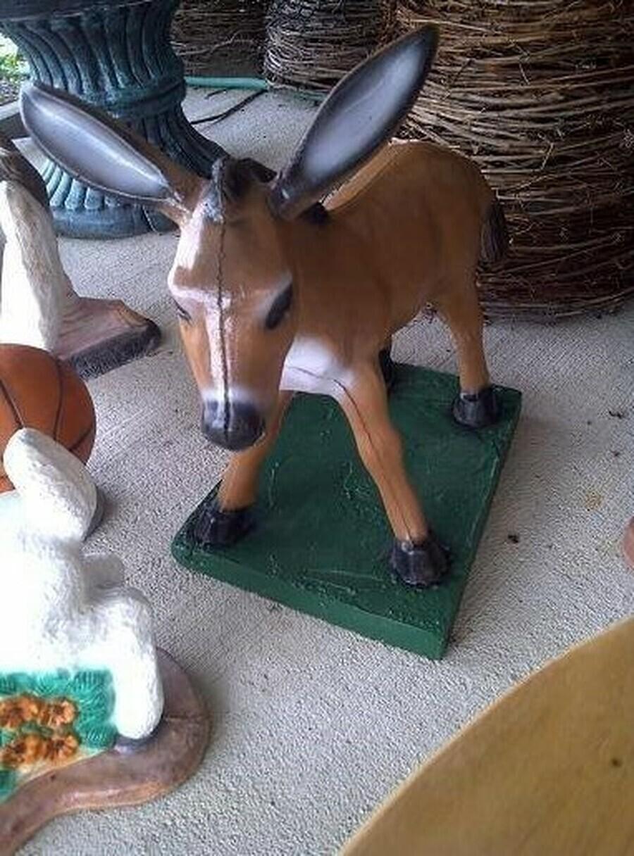 MD. CMC Donkey & Cart