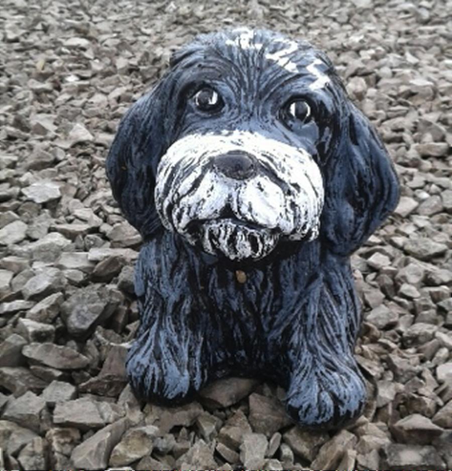 Sm. Furry Dog
