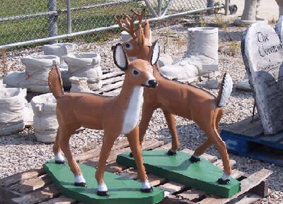 Md. Standing Deer