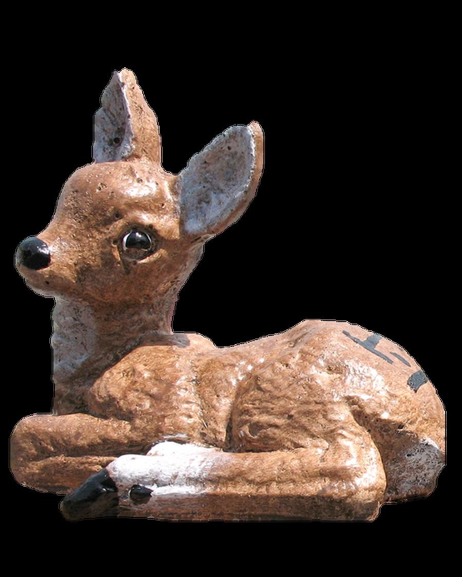 Detailed Baby Deer