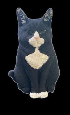 Squeakers Cat