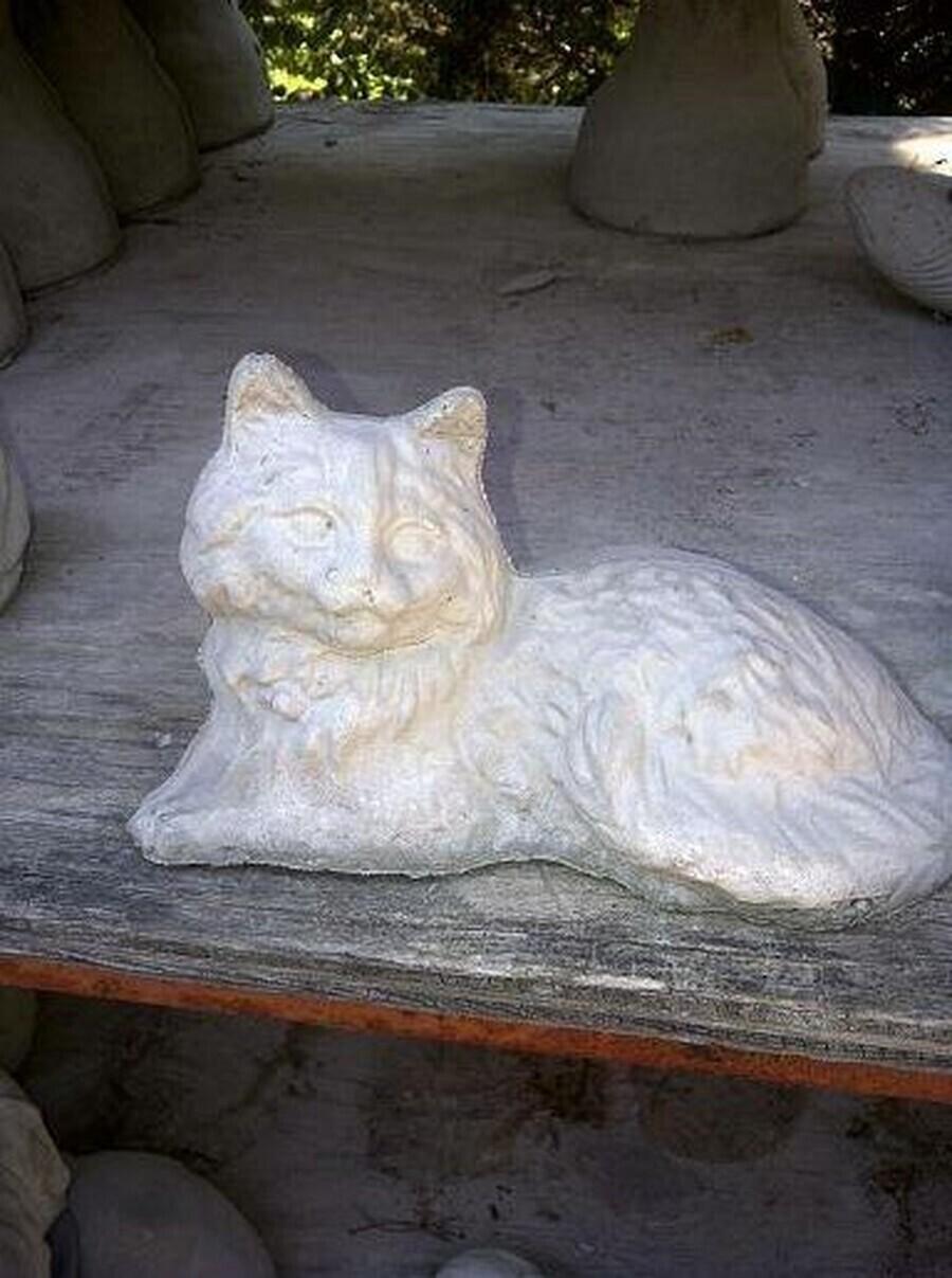 Sm. Laying Cat
