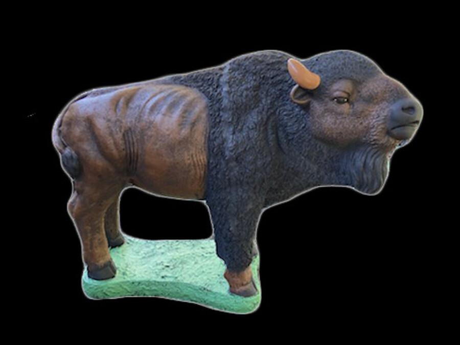 Plains Buffalo