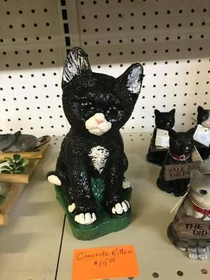 Detailed Kitten