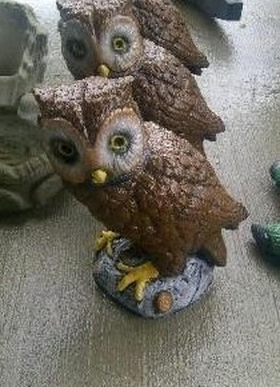 Sm. Owl