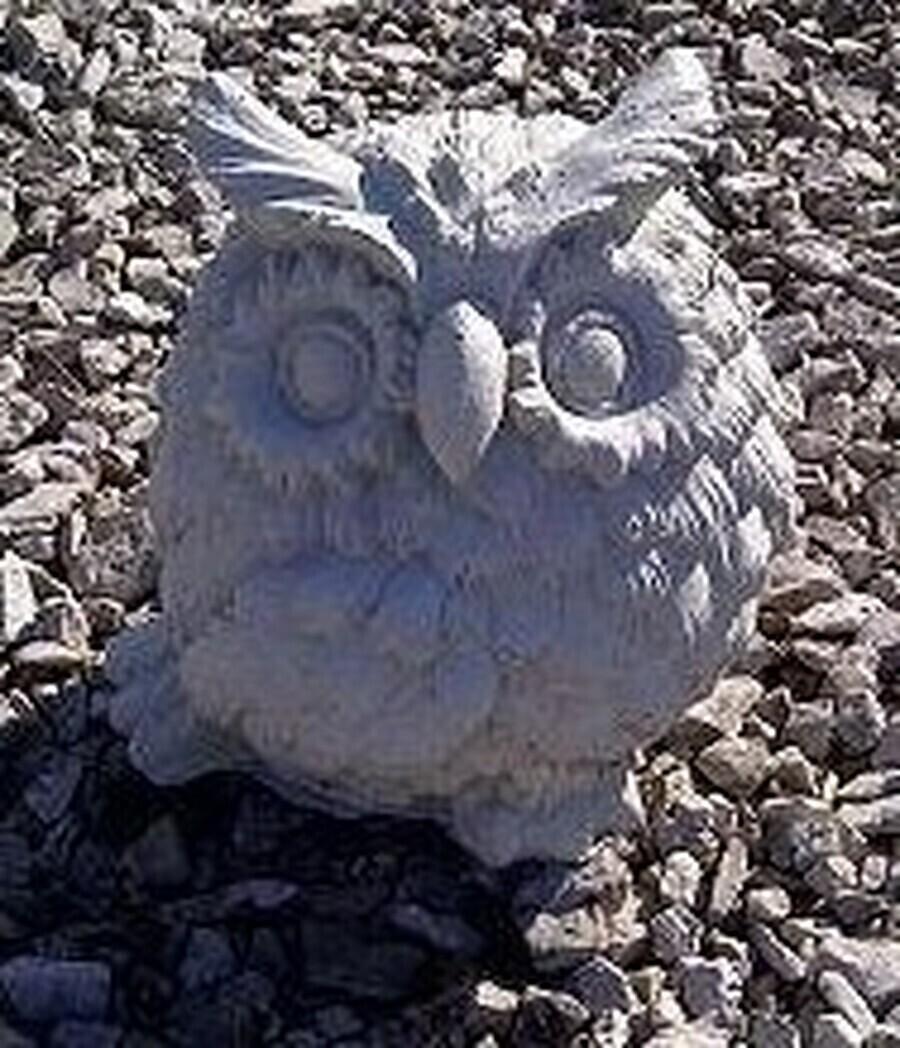 Sm. Fat Owl